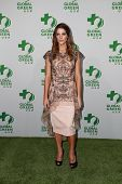 LOS ANGELES - FEB 18:  Ashley Greene at the Global Green USA's 12th Annual Pre-Oscar Party at a Avalon on February 18, 2015 in Los Angeles, CA