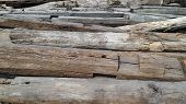 Used Wood Logs
