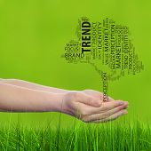Concept or conceptual tree media word cloud tagcloud in man or woman hand on green blur grass background