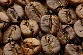 image of spit-roast  - Roasted coffee beans macro shot with extended depth of field under soft light - JPG