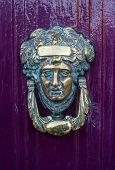 brass Door Knocker on a purple door