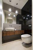 Modern Luxury Toilet Room