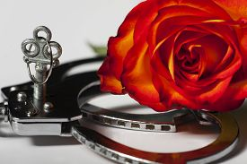 image of leather-bound  - closeup of handcuffs with a rose on white - JPG