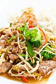 picture of bean sprouts  - Stewed meat with vegetables and bean sprouts - JPG