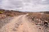 image of dirt road  - Dirt Road through the Desert in Tenerife Island Spain - JPG