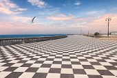 pic of bannister  - Mascagni Terrace at dawn - JPG