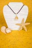 picture of conch  - Conch shell pendant hanging on a brown rope cord - JPG