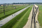 picture of auschwitz  - The railroadtracks in concentration camp Auschwitz Birkenau - JPG