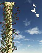 Rose Column with White Doves