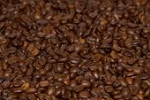 Roasted Coffe Beans Close-up
