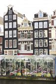 Greenhouses In Amsterdam