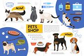 Flat Pet Shop Infographic Template With Dog Cat Food Toys Bowls Collar Comb Leash Syringe Medical Ki poster