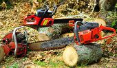 PowerSaws ao ar livre