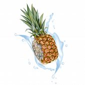 Pineapple 3d Vector With Realistic Splash Design Elements. Packaging Splashing Falling Ananas For Ju poster