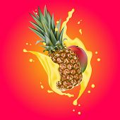 Splash Of Ananas Juice. Mango And Pineapple. 3d Realistic Vector Eps 10. Packaging Template. Mango L poster