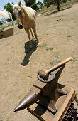 Horseshoe And Anvil