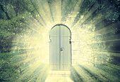 Door Of The Heaven In A Dreamy Rosegarden  With Sunbeam poster