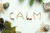 Mindfulness Calmness Unplug Concept, Word Calm From Forest Natural Material poster