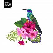 Summer Tropical Design With Hummingbird And Exotic Flowers. Floral Background With Tropic Bird, Hibi poster