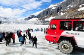 COLUMBIA ICEFIELDS, CANADA-AUGUST 21: Massive Ice Explorers, specially designed for glacial travel,
