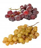 Grapes Tow