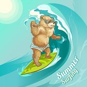 Vector Brown Bear Riding Big Wave In Sunglasses. Cartoon Funny Animal On Green Surfboard With Summer poster