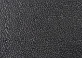 Natural Leather Texture
