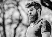 Bearded Man With Lush Hair. Free And Happy Time. Male Fashion And Beauty. Brutal Male With Perfect S poster