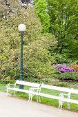 park in Karlovy Vary (Carlsbad), Czech Republic