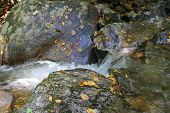 Mountain Runoff Stream