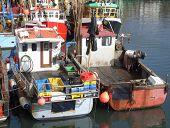 Trawler Fleet Berthed In Harbour
