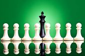 white pawns in front of a black king - chess pieces on green background