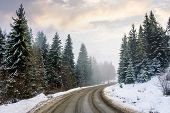 Country Road Through Forest. Misty Winter Weather In The Morning. Snow On The Roadside. Overcast Sky poster