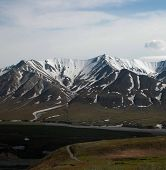 stock photo of denali national park  - Denali National Park is filled with beautiful - JPG