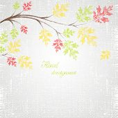 Autumn background with green, yellow and red leaves.