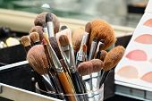 Makeup Artist Brushes