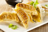 foto of soy sauce  - Homemade Asian Vegeterian Potstickers with soy sauce and pork - JPG