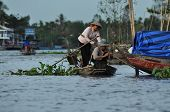 Vietnamese fisherman fishing in the Mekong delta, Vietnam