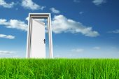 picture of door  - High resolution green - JPG