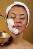 Spa Beauty Facial Mask Application