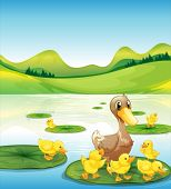 picture of duck pond  - Illustration of a duck and her ducklings at the pond - JPG
