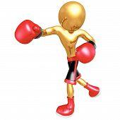Boxeo 3D Vector