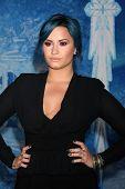LOS ANGELES - NOV 19:  Demi Lovato at the