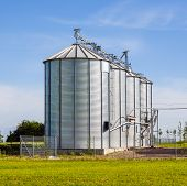 Beautiful Silver Silos In Landscape
