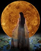 Water fairy in front of a Venus. Elements of this image furnished by NASA.