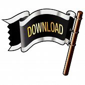Download Icon On Pirate Flag