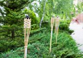 Decoration Tiki Oil Torches.