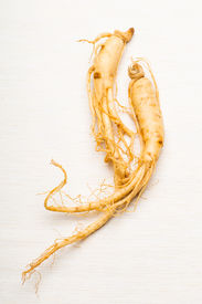 pic of ginseng  - Ginseng over the white background - JPG