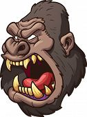 Angry gorilla head. Vector clip art illustration with simple gradients. All in a single layer.
