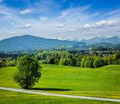 Road in pastoral german countryside with Bavarian Alps in background in summer